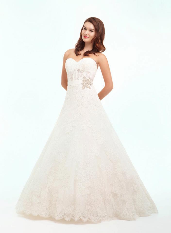 Danielle Caprese Wedding Dress 6