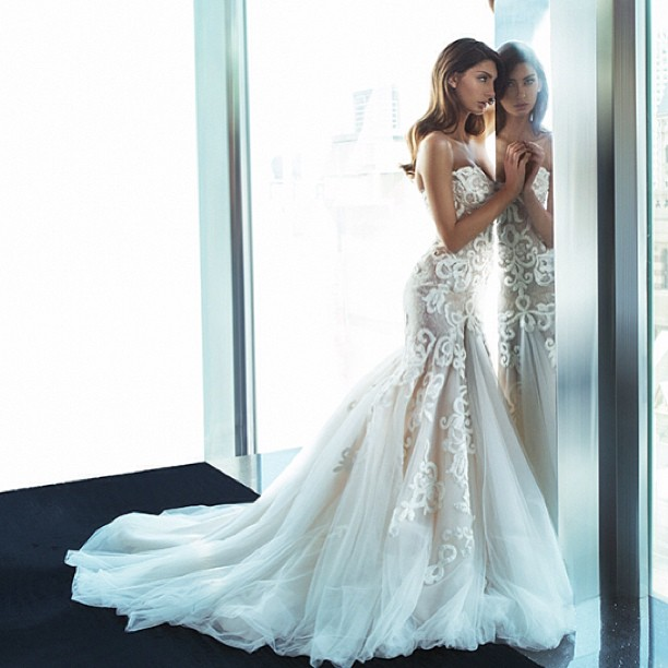 Dream dress not dream price the knot for Steven khalil wedding dresses cost
