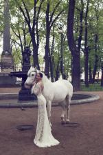 nurit-hen-bridal-gowns-spring-2016-fashionbride-website-dresses34