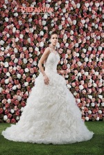 angelo-bianca-2016-bridal-collection-wedding-gowns-thefashionbrides11